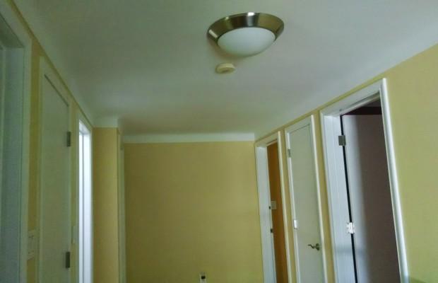 plaster repair after
