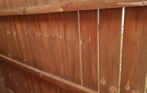 Let us clean up your fences & decks